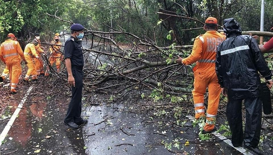 NDRF personnel clearing fallen trees from a road in Alibag town of Raigad district following cyclone Nisarga landfall in India's western coast.