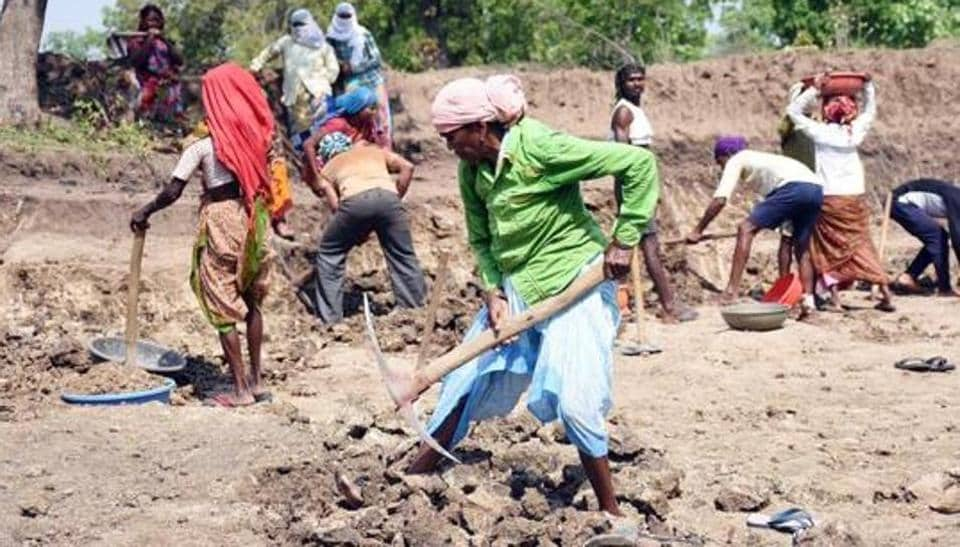 The importance of the MGNREGS