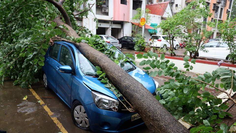 The Kalyan Dombivli Municipal Corporation (KDMC) fire department managed to clear 77 out of 112 uprooted trees.