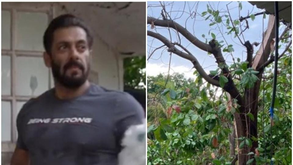 Salman Khan has been quarantining at his Panvel farmhouse with friends and family.