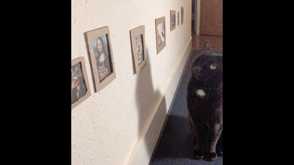 This home-museum contains all the cultural classics but has an added 'kitty twist' to them.