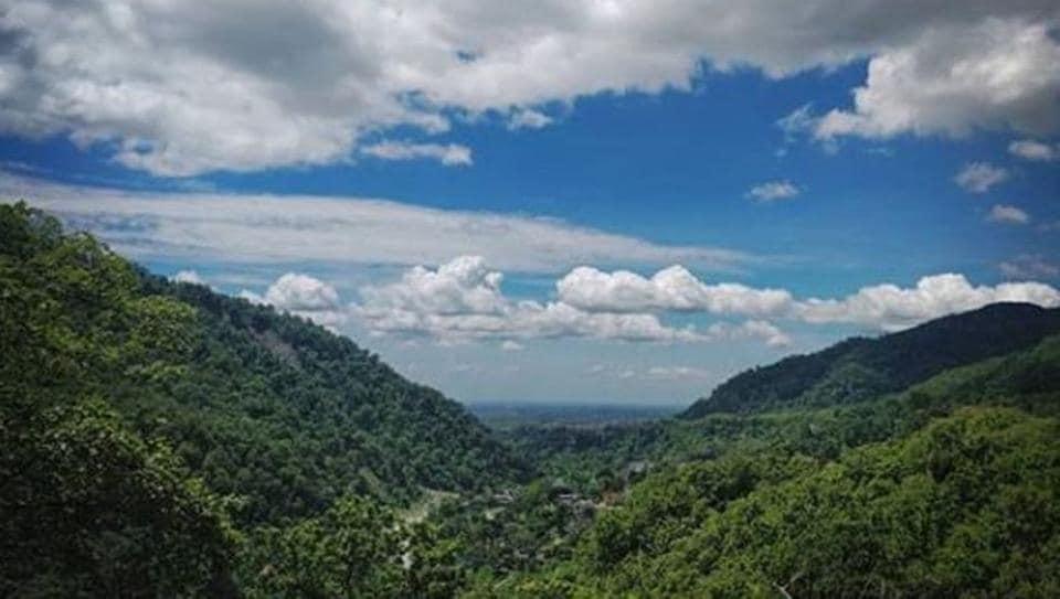 Haldwani in Uttarakhand has been named after 'Haldu' or Haldina Cordifolia, a tree which was once found in abundance here.