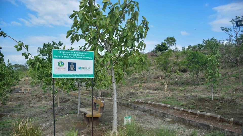 Legal researchers said there should be clarity on the policy and which areas will be earmarked for the development of urban forests.
