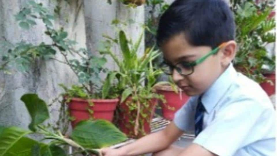 Students are keeping themselves busy in diverse activities such as gardening, cooking, photography and yoga