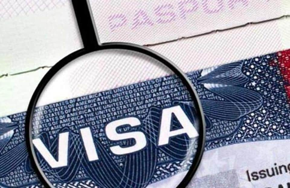 Visa consultancy, IELTS centres in Chandigarh find no takers