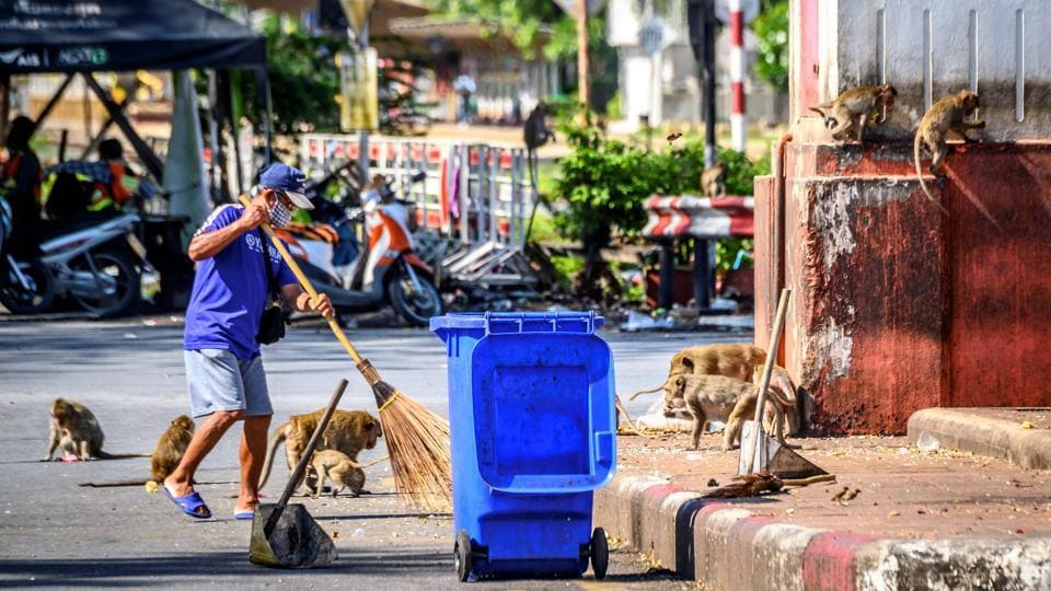 A worker cleans a roundabout, one of the main gathering points of the longtail macaques in Lopburi on June 20. Some areas of the city have simply been surrendered to the monkeys. An abandoned cinema is the macaques' headquarters -- and cemetery. Dead monkeys are laid to rest by their peers in the projection room in the cinema's rear and any human who enters is attacked.  (Mladen Antonov / AFP)