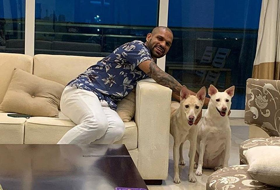Shikhar Dhawan announced on Friday that he has adopted two dogs.