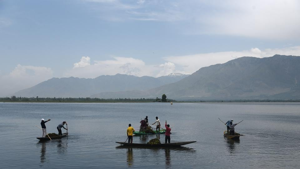 Labourers in boats go about de-weeding the Dal Lake in Srinagar, Jammu and Kashmir.