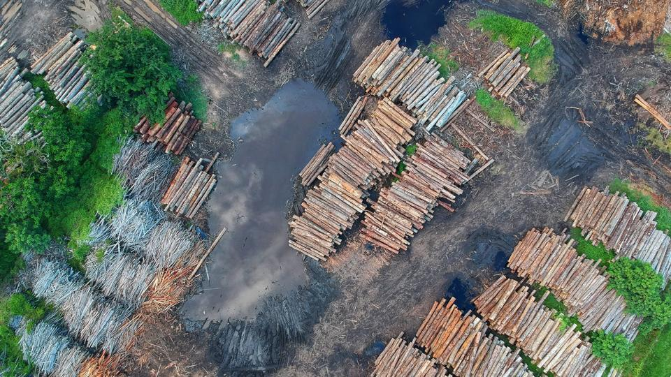 The loss of these benefits through ecosystem degradation -- including deforestation, land use change and agricultural intensification -- further compounds the problem, according to the researchers.