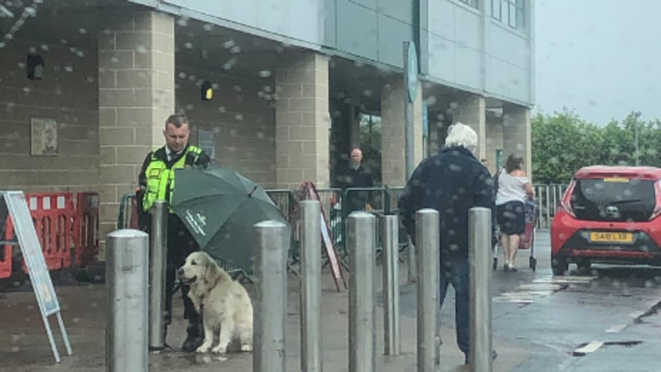 The image shows the man shielding the dog from the rain.