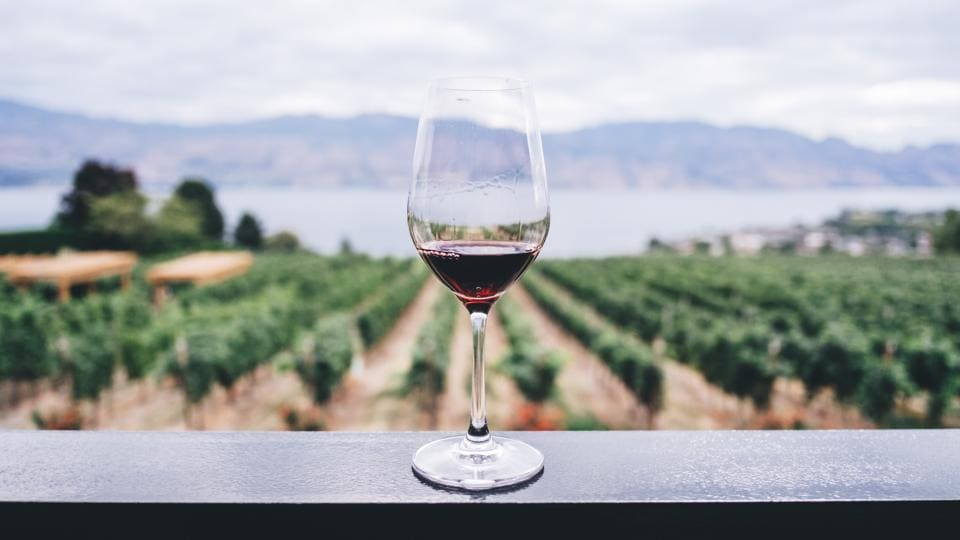 A guide to women winemakers, who shone against all odds inthe world of grapes
