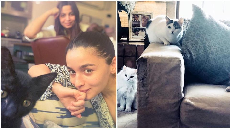 Alia Bhatt poses with sister Shaheen, new pet Juniper: 'Girl duo just became a girl...