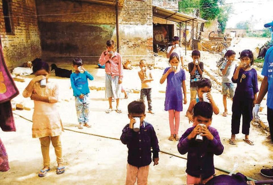 Children in a village near Lucknow drinking free goat milk.