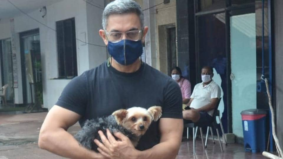 Aamir Khan photographed at the vet.