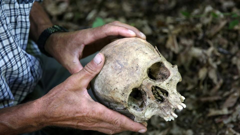 A Srebrenica genocide survivor looks at a skull that he found in the forest near Konjevic Polje, Bosnia and Herzegovina .