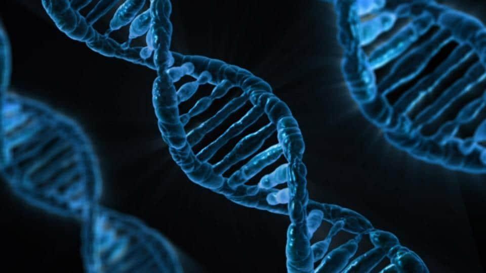 Representational Image of DNA.