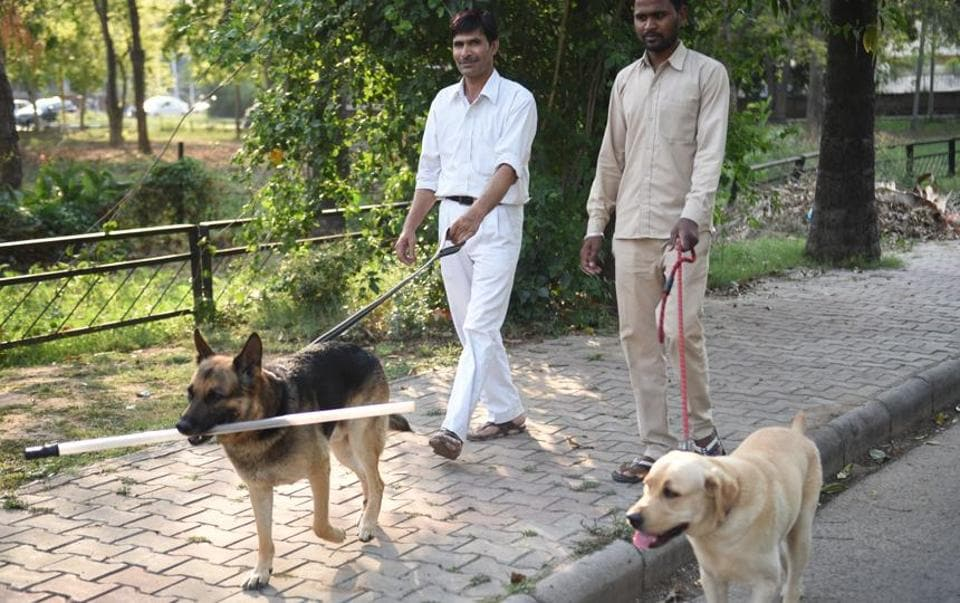 The facility, which would have been north India's first dog park, was mooted by Punjab governor and UT administrator VPS Badnore.