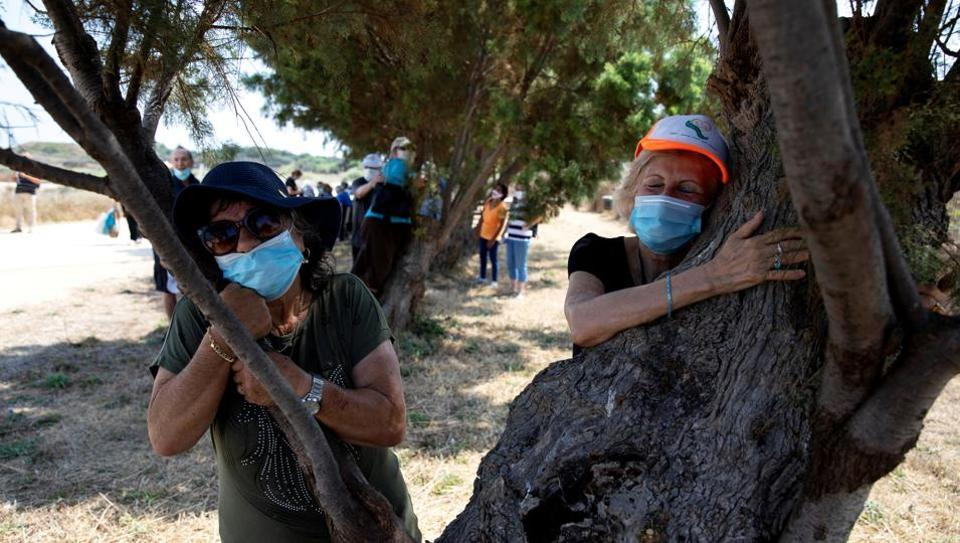 People take part in a campaign by Israel's Nature and Parks Authority calling on Israelis to join sightseeing tours and find comfort in tree hugging.