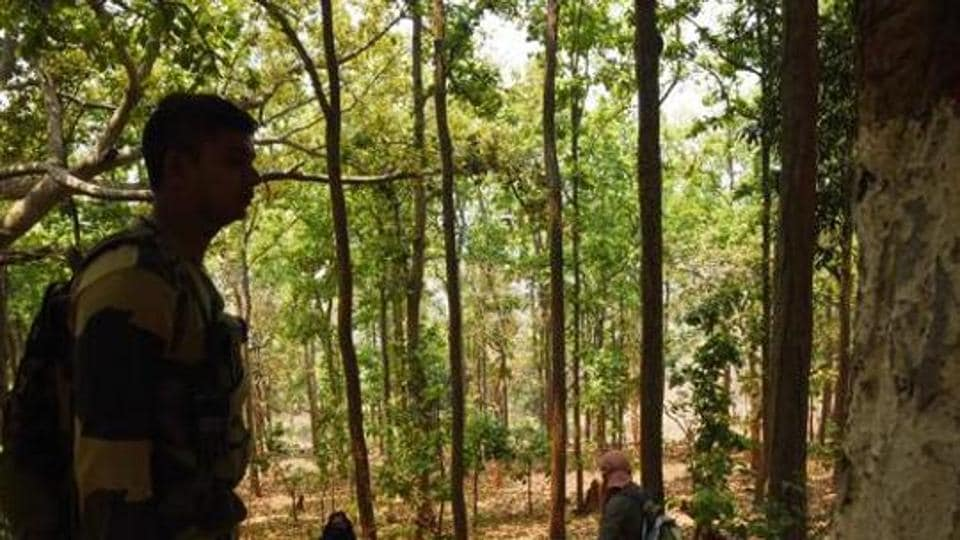 The seizures were made in the in the jungles of Rajnandgaon district.