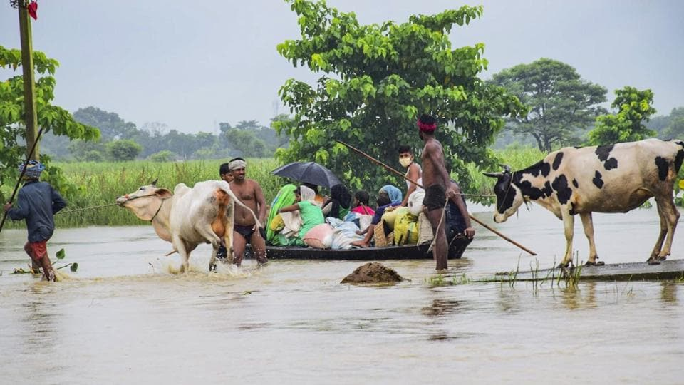 Villagers with their cattle move to a safer place from a flood-affected area at Jagari Tola, on July 22. No deaths have been reported in Bihar so far but there have  been many cases of snake bites, National Disaster Relief Force (NDRF) Director-General (DG) SN Pradhan told ANI. (PTI)