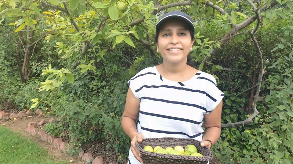 Meenakshi Kishore of Agra quit a career in finance and marketing to convert her family farm into a nutrition-packed food forest.