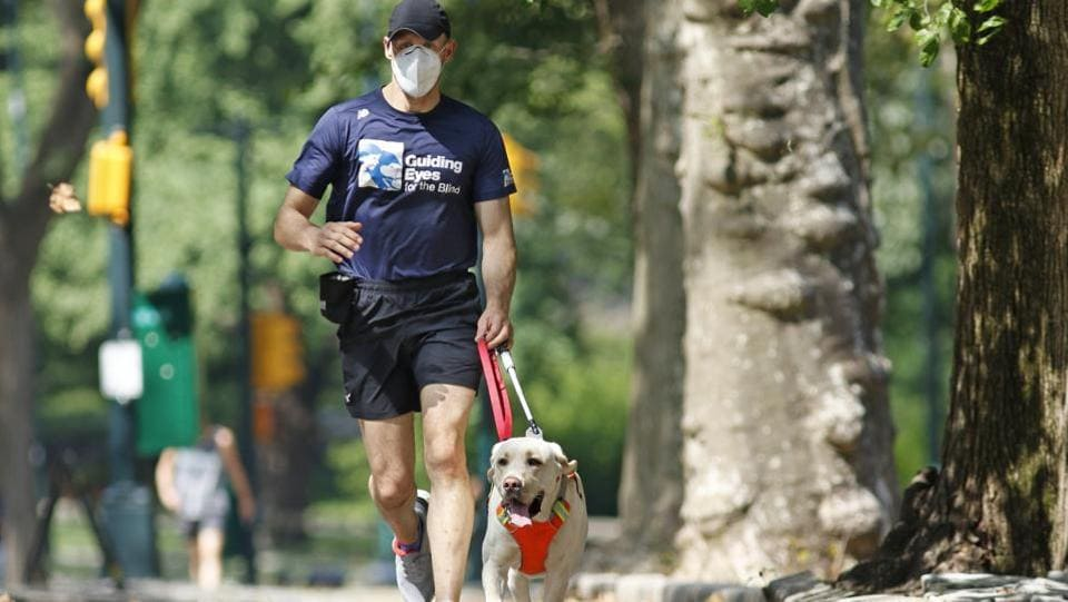 Thomas Panek runs with his running guide, Blaze, a Labrador retriever, Thursday, July 23, 2020, in Central Park in New York.  (AP Photo/Kathy Willens)