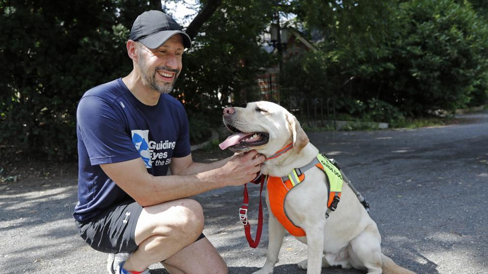 Thomas Panek pauses with his Labrador retriever, Blaze, a trained guide dog, after running in Central Park, Thursday, July 23, 2020, in New York. (AP Photo/Kathy Willens)