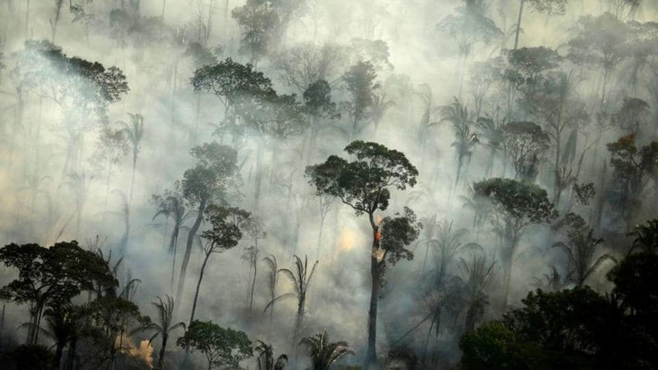 Smoke billows from a fire in an area of the Amazon rainforest near Porto Velho, Rondonia State, Brazil.