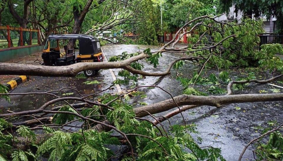 South Mumbai gets season's heaviest rain in 9 hours, CM Uddhav Thackeray asks people to stay home