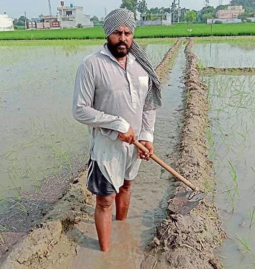 Inderjit Singh Grewal, former PSO, takes to farming to earn a livelihood amid the pandemic in Ludhiana on Friday.