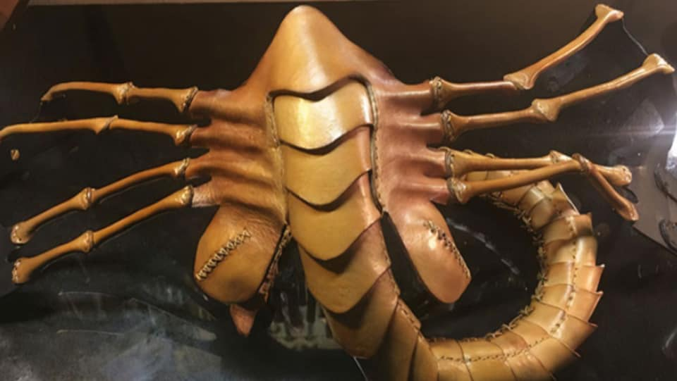 Facehugger mask might be the perfect invention for 2020