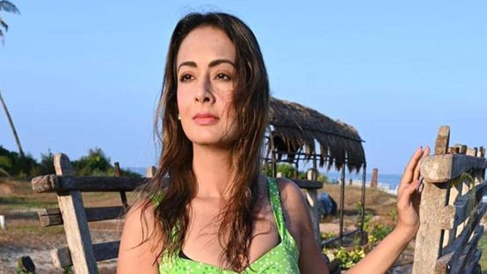 Preeti Jhangiani will be seen next in her debut web series Made For Each Other. Some portions of it is left to be shot.