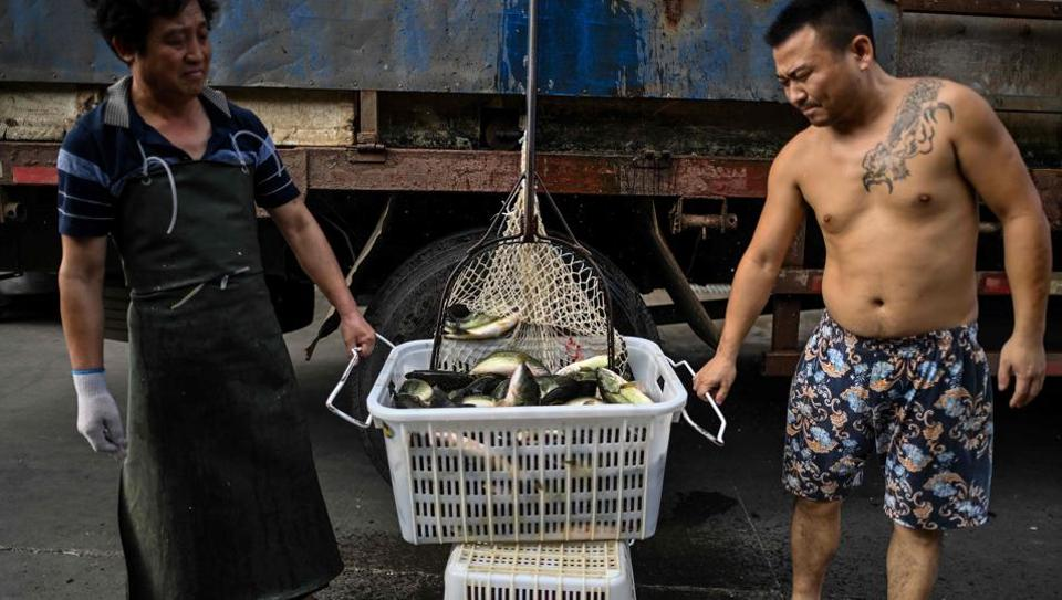 Coronavirus found on frozen seafood in China