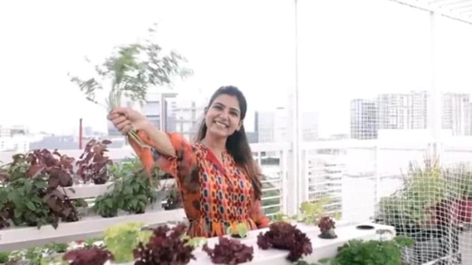 Samantha Akkineni maintains a terrace garden.