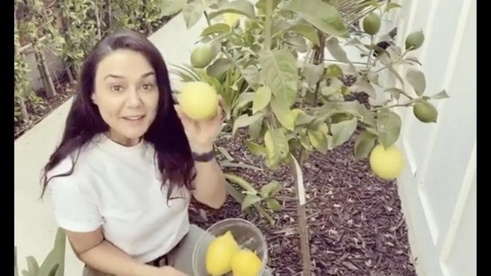 The image shows Preity Zinta holding her homegrown lemon.