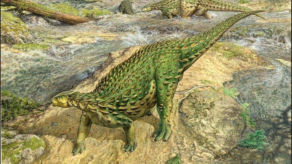 A life reconstruction of the Jurassic Period dinosaur Scelidosaurus, which lived roughly 193 million years ago, is seen in this artist's rendition released by the University of Cambridge August 27, 2020. John Sibbick/Handout via REUTERS