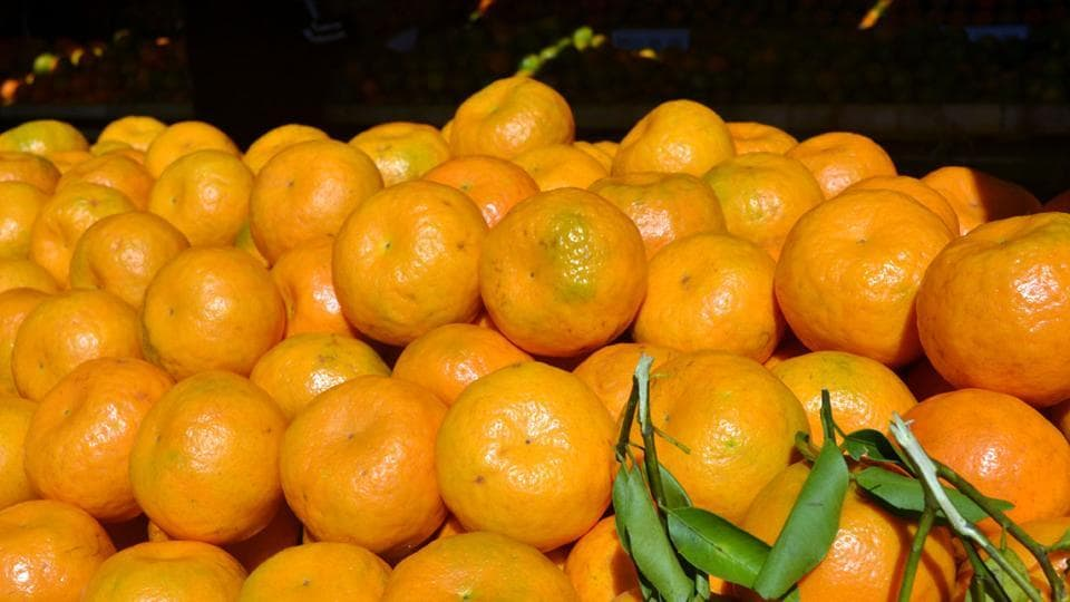 Tamenglong orange is a species of mandarin group is a unique fruit crop found only in Tamenglong district of Manipur.