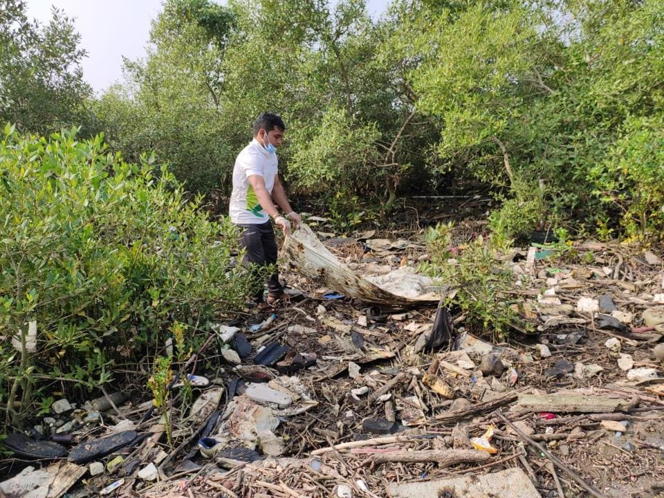 The NGO has been cleaning Navi Mumbai mangroves every Sunday since August 15.