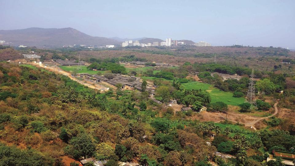 The group, which includes environmentalists and lawyers, has appealed state environment minister Aaditya Thackery to protect flamingos and their habitats, declare the entire 3,122-acre Aarey Milk Colony as a forest, increase protection for Mumbai's green cover, ensure supportive policy for the livelihood of fishers, and increase open spaces and parks as part of the campaign.