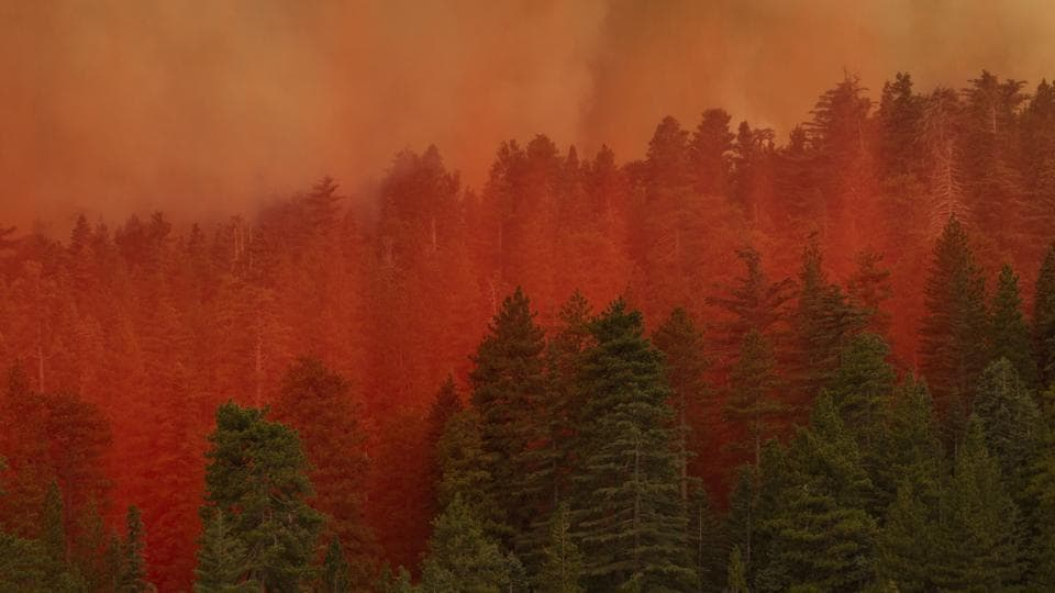 Crews in Jackson County, Oregon, were hoping to venture into rural areas where the Alameda Fire has abated slightly with slowing winds, sending up thick plumes of smoke as the embers burned.