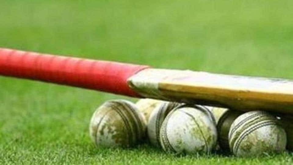 Cricket bat and balls.