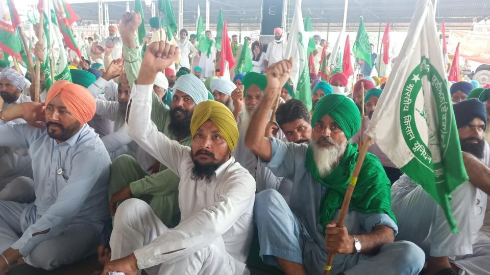 Punjab's farmers fear new regime will end assured procurement under MSP