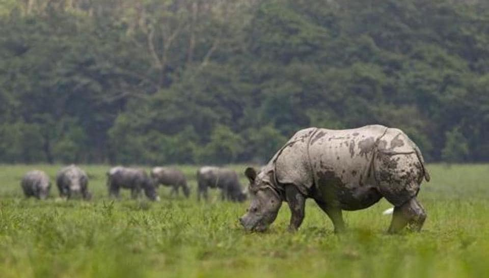 The Wildlife Protection Act was last amended in 2003.
