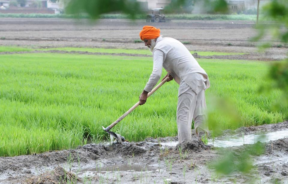India is at the cusp of a new frontier in agriculture growth and development — one that farmers, businesses, government and consumers will build together.