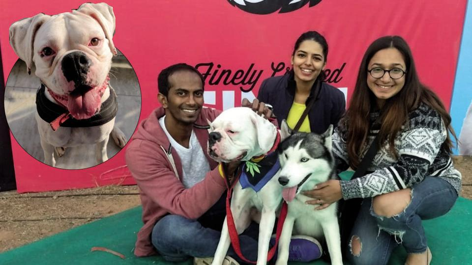 (From left) Sadaf Chowdhary and her sister Mansi Grover, with their dog Frappé (inset) at the Delhi Pet Federation, 2018 with B Prashant Kumar, the prospective dog godparent