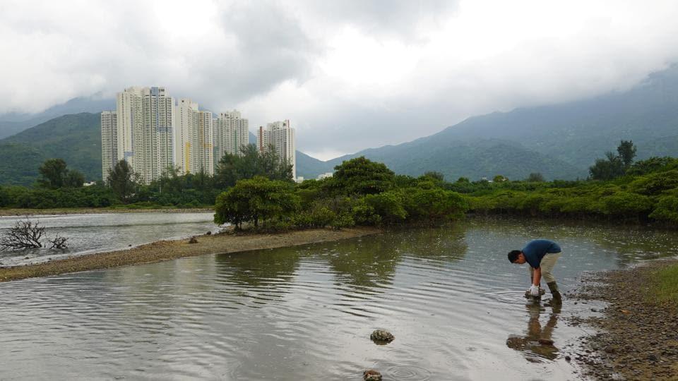 Climate activist Lance Lau, 11, picks up trash at San Tau Beach during a climate strike and a beach clean-up on Lantau island in Hong Kong.