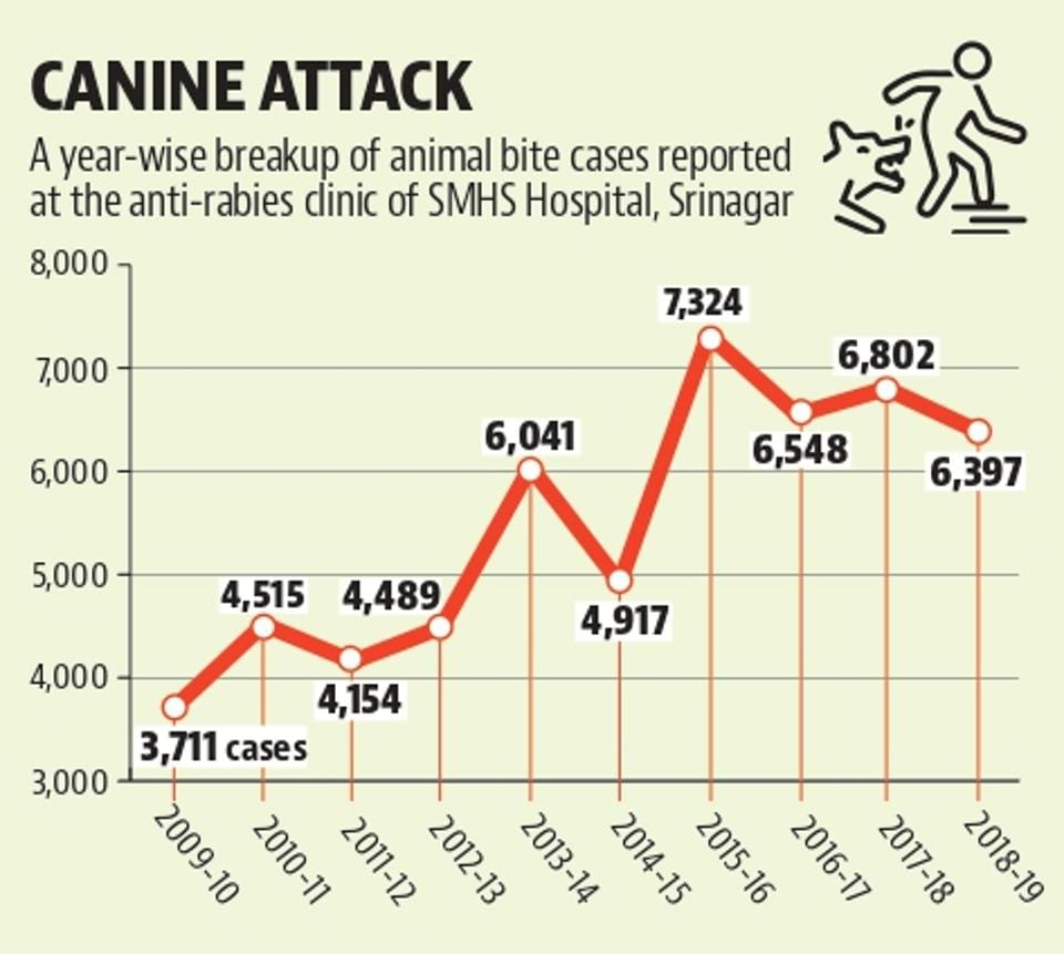 The graphical representation shows the trend of animal bites recorded in Srinagar in the past 10 years.