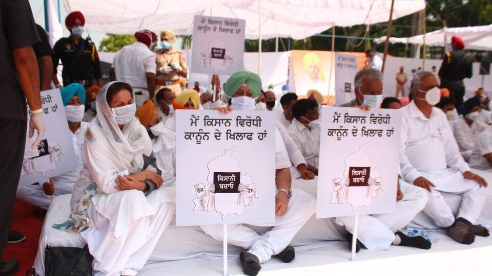 Chief minister Capt Amarinder Singh and Punjab Congress president Sunil Jakhar holding up placards during a dharna  in support of farmers at Khatkar Kalan, the native village of Shaheed Bhagat Singh,  on Monday. The party's Punjab affairs in-charge Harish Rawat and Patiala MP Preneet Kaur were among the leaders present on the occasion.