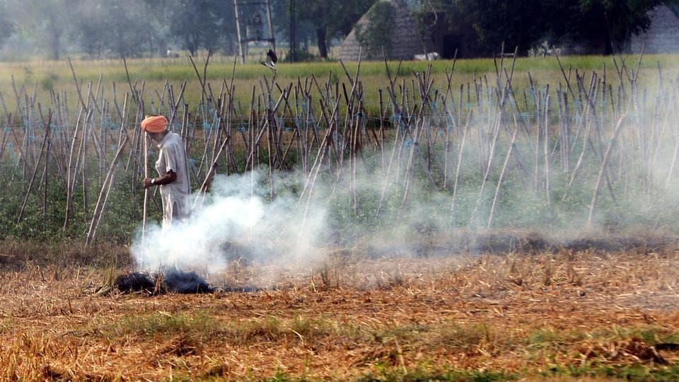 Patiala, India-September 27, 2020: A farmer burning paddy stubble at village Asarpur near Patiala on Sunday, September 27, 2020. (Photo by / Hindustan Times)