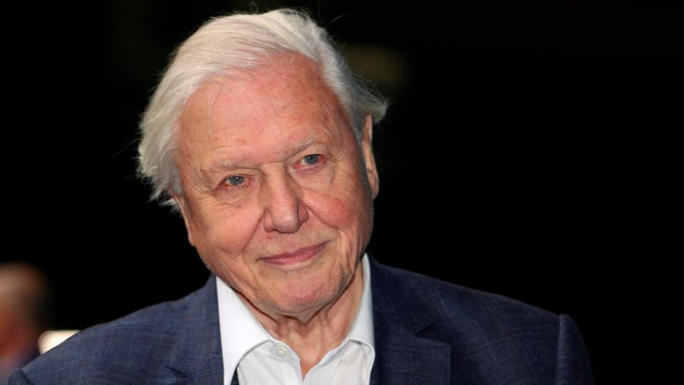 The image shows broadcaster and film maker David Attenborough.